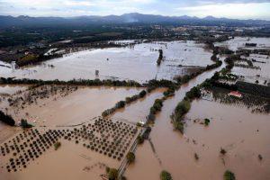 洪水退去后该如何处理霉菌?