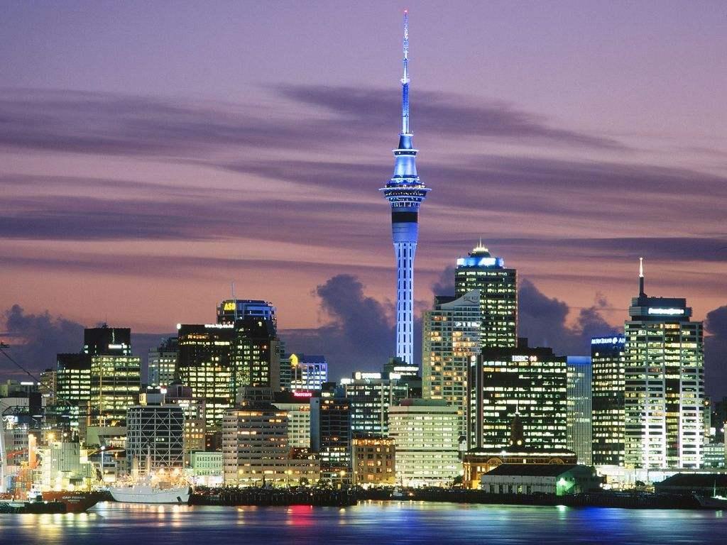 潮湿天气在新西兰如何除螨虫?