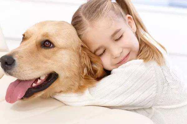狗身上有螨虫怎么办 ?怎么治疗狗螨虫?