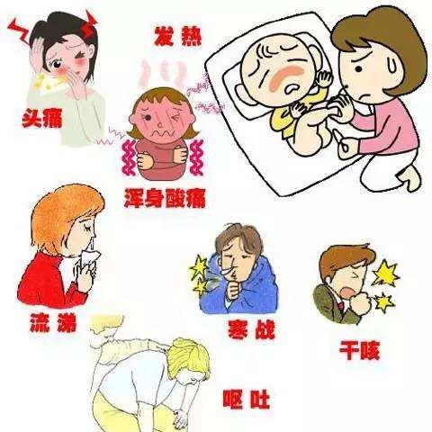 宝宝湿气重导致的胃口不好