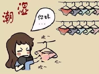 问广东晴为何物?