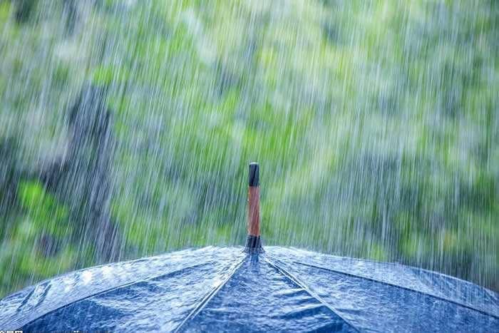 雨季潮湿,防潮除湿变第一顺位!